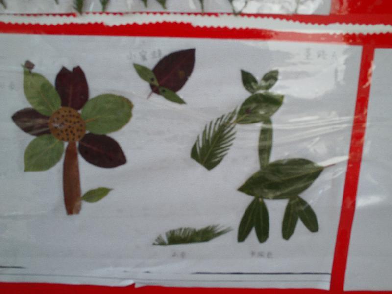 带孩子外出郊游,采集各种各样的树叶,和孩子一起制作树叶贴画.