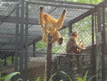 秋游~动物园