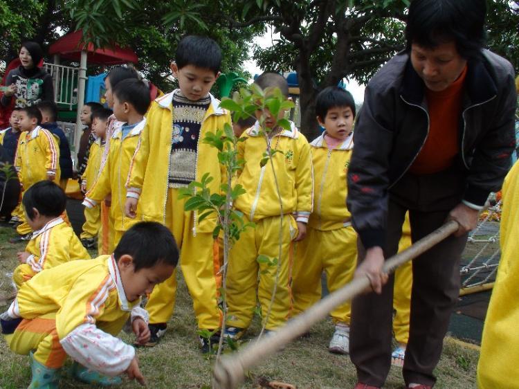 开发区小隐幼儿园开展亲子植树活动