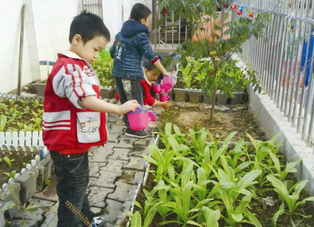 园所简介-童话世界幼儿园