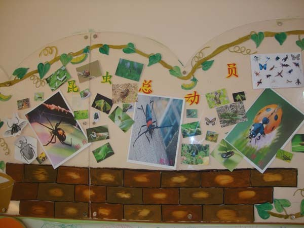 如何布置幼儿园的主题墙