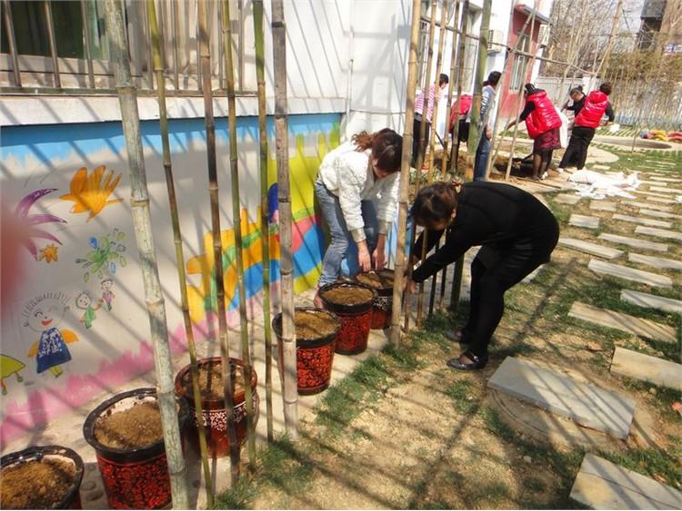 石家庄市第二幼儿园开辟园内种植园地